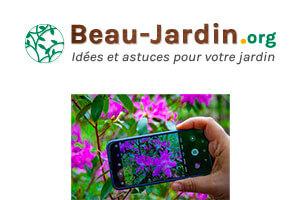 Application gratuite pour reconnaître les fleurs et plantes